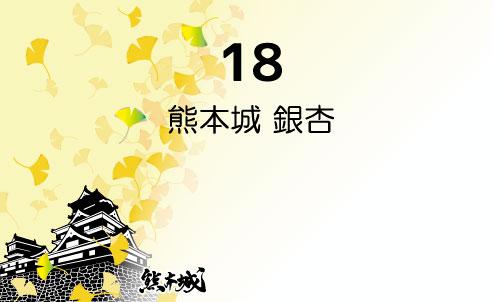 R 熊本城 銀杏